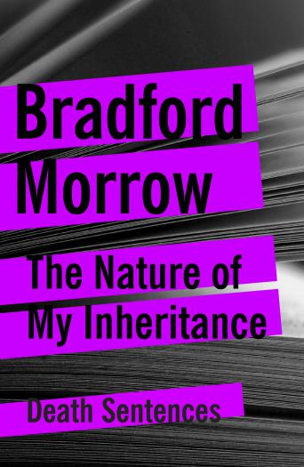 The Nature of My Inheritance
